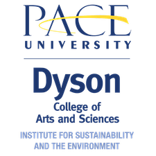 Image result for dcise logo pace