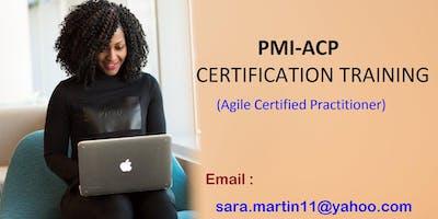 PMI-ACP Classroom Certification Training Course in Logan, UT