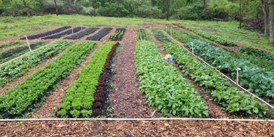 Farm Tour & Herb Garden Workshop