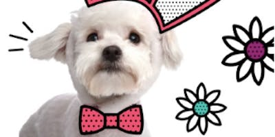 Pet Photos with the Easter Bunny At Menlo Park Mall