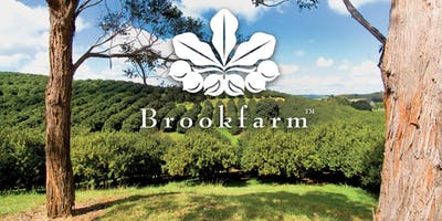 Brookfarm Long Table Orchard Breakfast