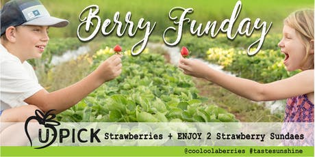 Berry Funday tickets