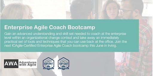 Enterprise Agile Coach Bootcamp (ICP-ENT & ICP-CAT) | Dallas - June 2019