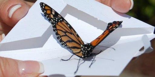 Butterfly Release -Spalding 2019