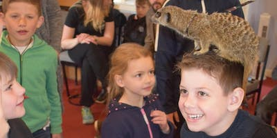 An Exotic Animal Handling Experience With Urban Safari (13:00-13:45)