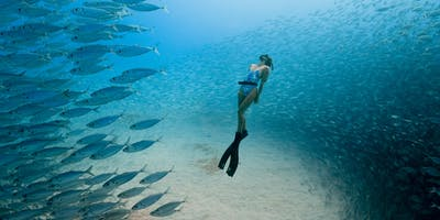 Ocean Film Festival - Leamington Spa - 14 September 2019