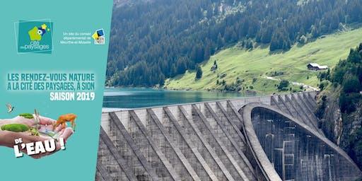 Atelier scientifique: L'eau, une source d'énergie (accès libre).