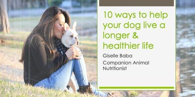 10 ways to help your dog live a longer and healthier life
