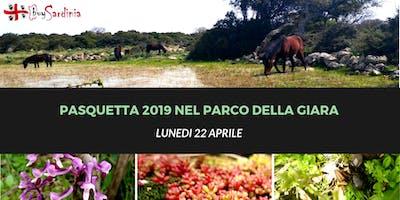 PASQUETTA 2019 NEL PARCO DELLA GIARA: LUN 22 APR
