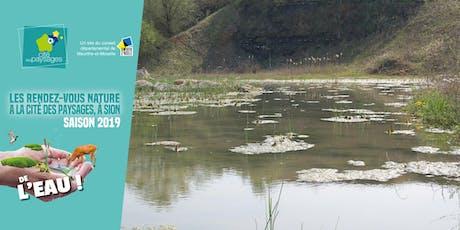 Atelier sur les milieux humides (accès libre) billets