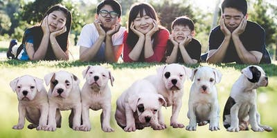 Family Laughter Yoga With Puppies