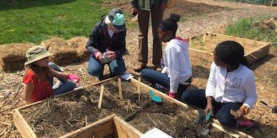 Butterfly Gardening for Kids