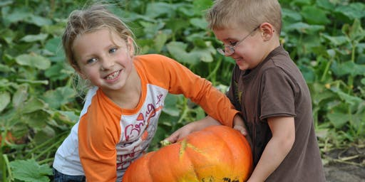 Pumpkinfest 2019 at Walters Pumpkin Patch