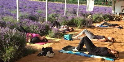 Early Morning Relax and Revitalise Pilates class in the stunning lavender fields Shoreham (July)