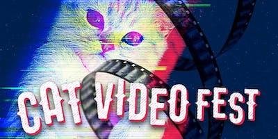 CatVideo Fest 2019