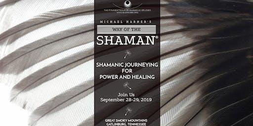 Workshop: The Way of the Shaman (Foundation for Shamanic Studies)