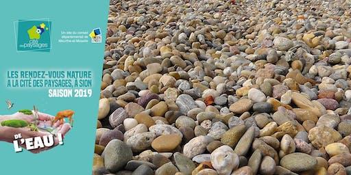 Atelier déco nature: sous les galets, la plage (accès libre)
