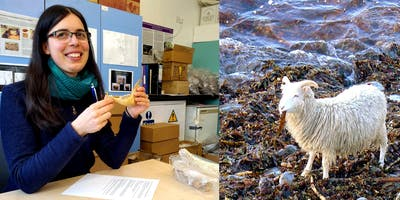 ISF 2019 - The difficulties of dating seaweed-eaters and other archaeological issues