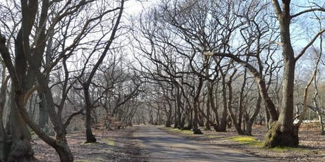 British Nordic Walking Exel Challenge Event : Burnham Beeches, Farnham Common tickets