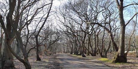 British Nordic Walking Exel Challenge Event : Burnham Beeches, Farnham Common tickets