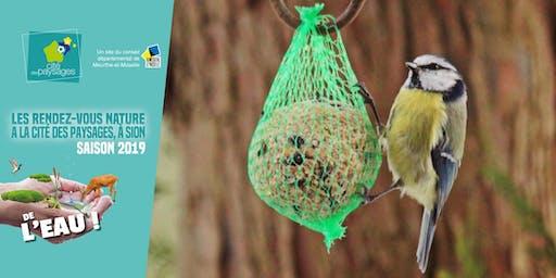 Atelier: Aider les oiseaux pour l'hiver.
