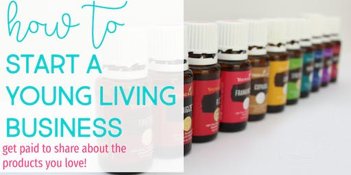 Curious about Young Living as a Business?