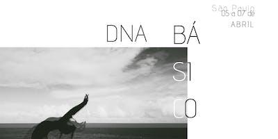 DNA+B%C3%81SICO+%7C+S%C3%83O+PAULO+