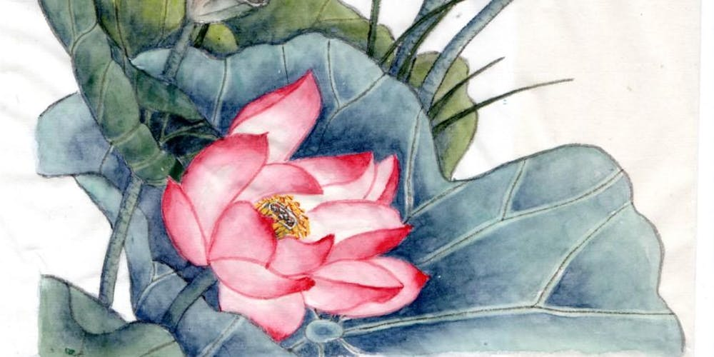 Chinese Brush Painting Lotus Flowers Meticulous Style With Anne