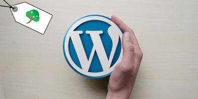 Make a Wordpress website in a day
