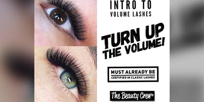 Turn Up The Volume! Intro To Volume Lash Extensions