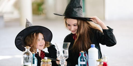Workshop:  Master Potions for Witches & Wizards