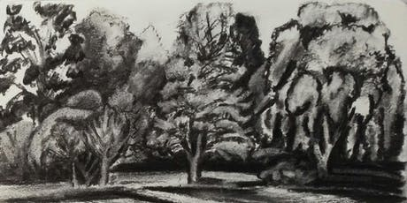 StART Drawing Trees and Nature Group tickets