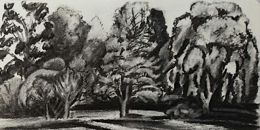 Start Drawing Trees and Nature Group