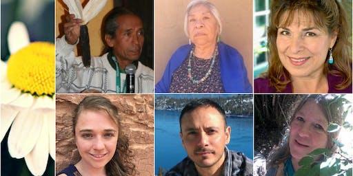Ancestral, Folk & Indigenous Herbalism 6 teacher intensives