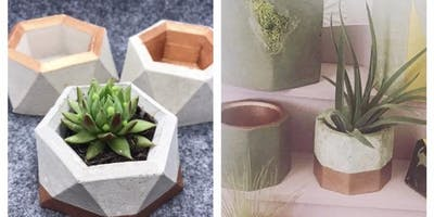 Make your own Concrete Planters Creative Craft Class