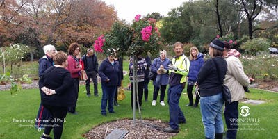2019 FREE Rose Pruning Demonstrations - Springvale Botanical Cemetery