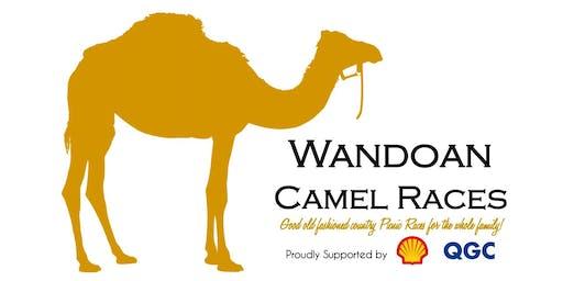 Wandoan Camel Races