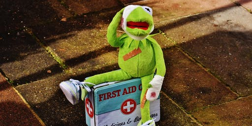 Paediatric First Aid 12 hour course (suitable for Ofsted)