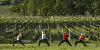 Stretch & Sip: Yoga at the Winery
