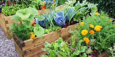 2019 Vegetable Gardening 101 - Series of Six Classes tickets
