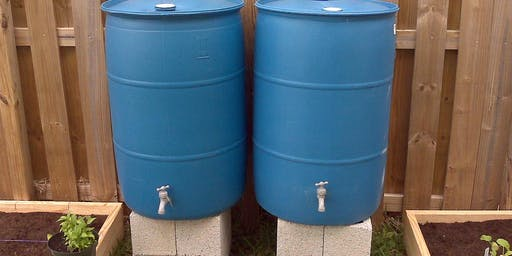 Rainwater Harvesting with Rain Barrels