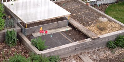 Planning and Growing Your Veggie Garden
