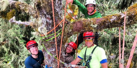 Forest Canopy Tour at Echo Lake - August tickets