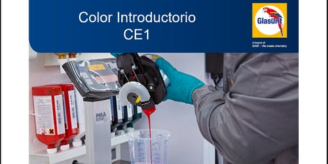 Curso de Color Introductorio  - CE1 entradas