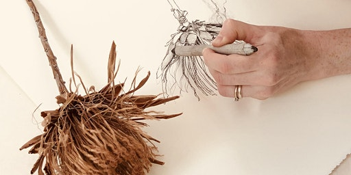 DRAWING FROM NATURE  With Laura Rich