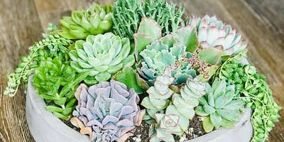DIY Outdoor Succulent Arrangement @ Sweet DIYGs