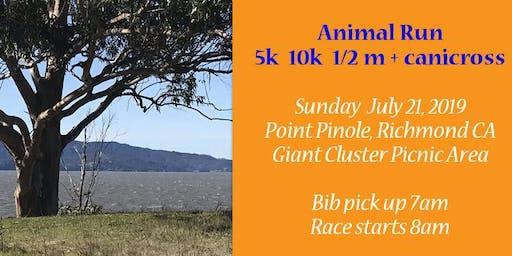 2nd Annual Animal Run 5k Bay Area charity race