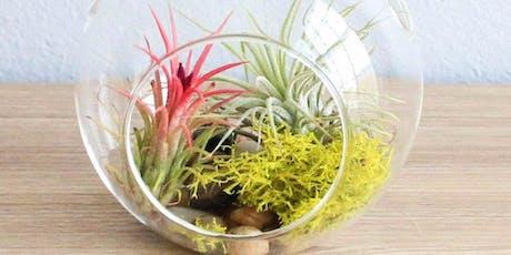 Plant Terrarium @ Main tickets