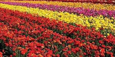Spring Floral Workshop entradas