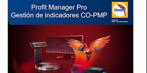 Profit Manager Pro - Gestión de Indicadores - PMP